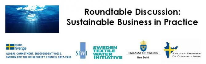 Roundtable Discussion- Sustainable Business in Practice